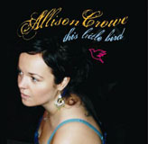 This Little Bird - Allison Crowe