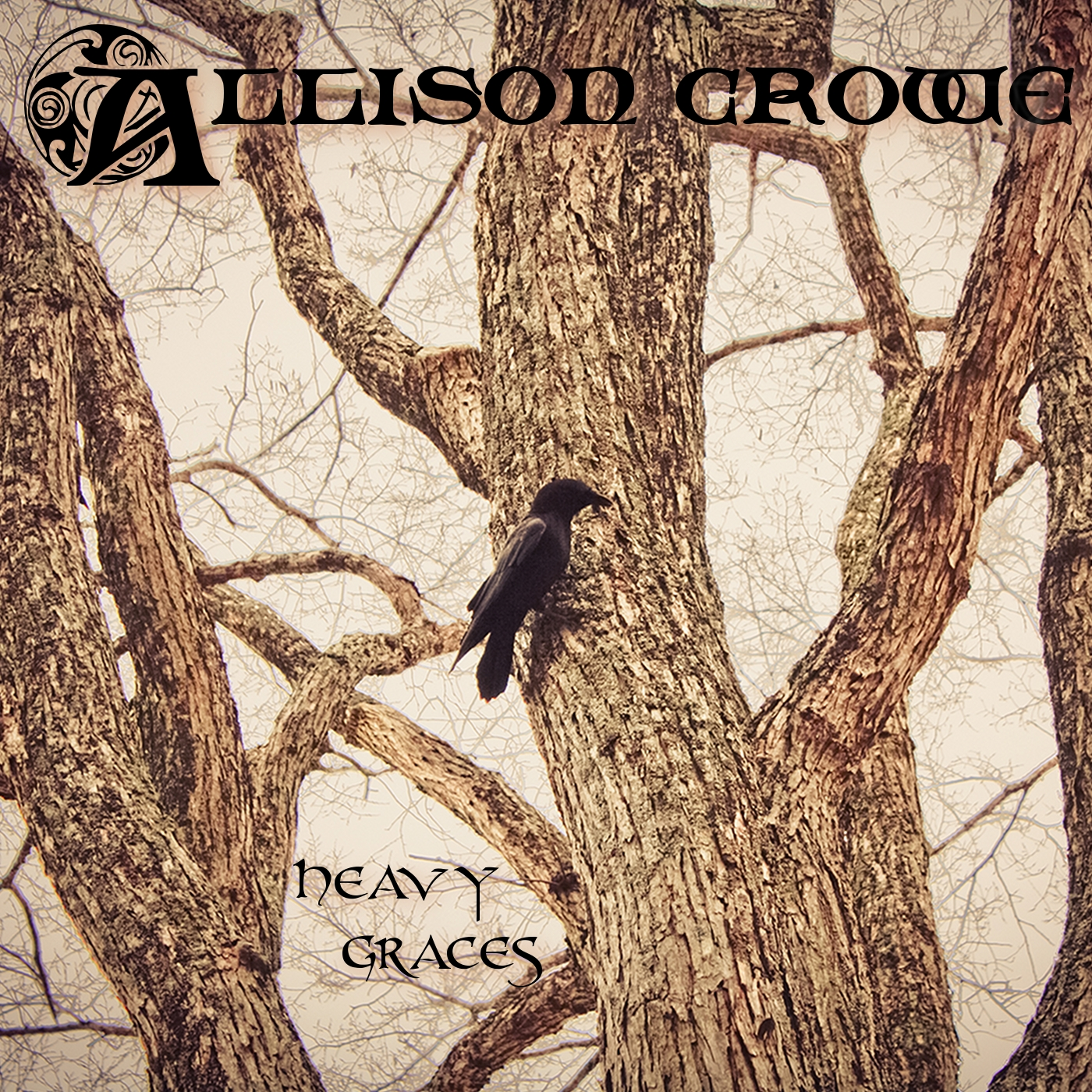 Through These Heavy Graces - Allison Crowe - music set 2013