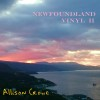 Newfoundland Vinyl II - Allison Crowe - album cover 100px