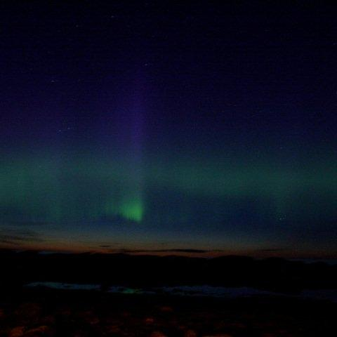 Northern Lights over Gros Morne - photo by Allison Crowe