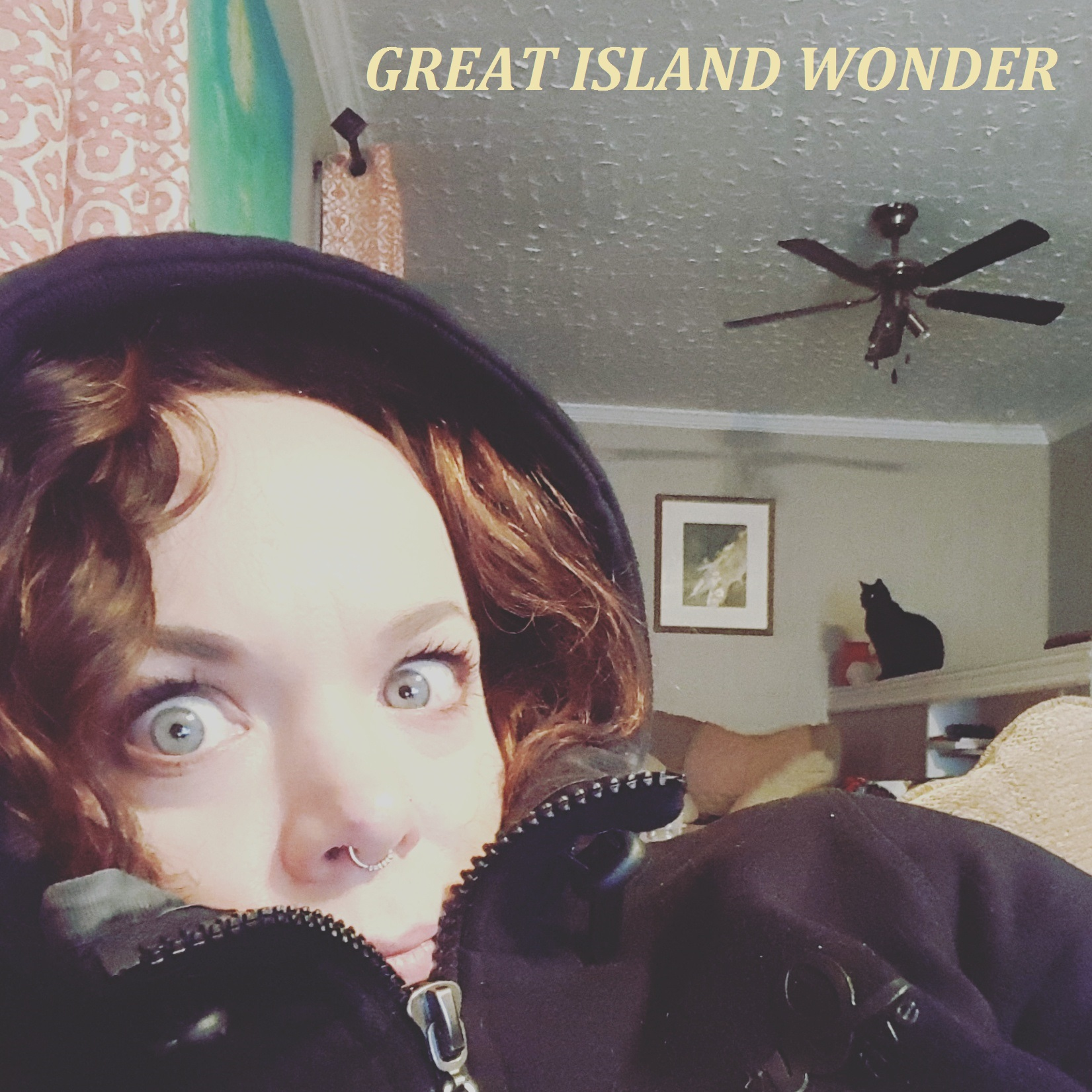 Great Island Wonder - album front cover